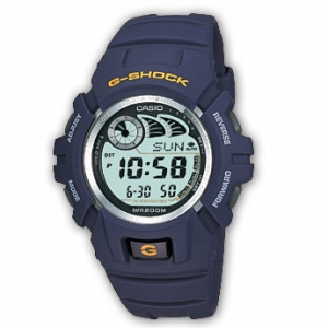 Часы Casio G-SHOCK G-2900F-2VER